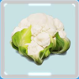カリフラワー イラスト ブロッコリーの弟 栄養や食べ方 選び方 描き方 詳細や歴史 4コママンガ