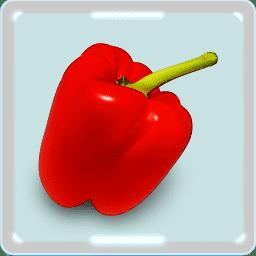 パプリカ 赤ピーマンのすごい栄養量とパプリカの花 歴史 唐辛子との関係をイラストでみる